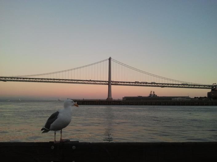 Essa é a Golden Gate, em São Francisco, Califórnia.